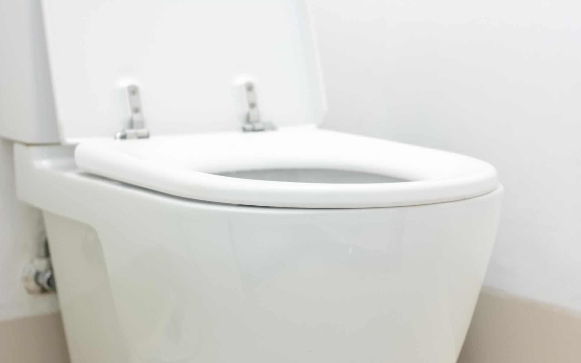 Stansbury Park Toilet Repair